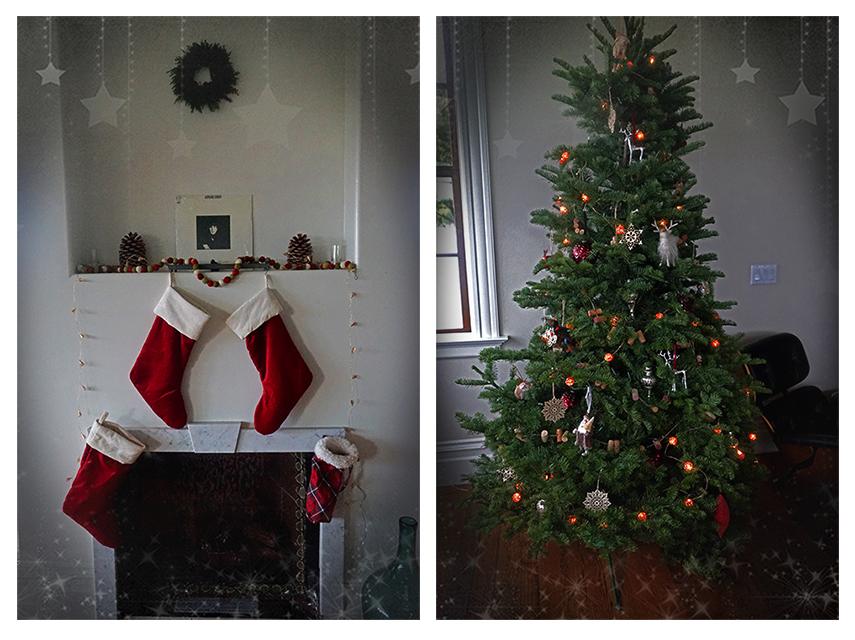 tree-and-stockings-blog