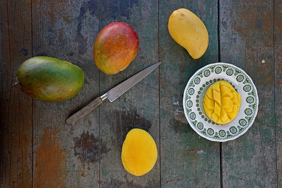 <a class=&quot;wonderplugin-gridgallery-posttitle-link&quot; href=&quot;http://www.underthemangotree.crespoorganic.com/2017/05/09/summer-mango-mania-muchosmangoes/&quot; target=&quot;_blank&quot;>Summer Mango Mania  #MuchosMangoes</a>
