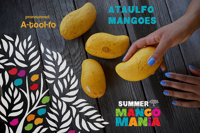 "<a class=""wonderplugin-gridgallery-posttitle-link"" href=""http://www.underthemangotree.crespoorganic.com/2017/06/14/olivers-markets-summer-mango-mania-demo-tasting-spotlight-ataulfo/"" target=""_blank"">Oliver's Markets Summer Mango Mania -  Demo & Tasting, Spotlight Ataulfo</a>"