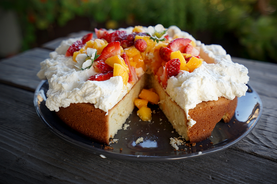 <a class=&quot;wonderplugin-gridgallery-posttitle-link&quot; href=&quot;http://www.underthemangotree.crespoorganic.com/2018/05/12/a-simple-mango-cake-for-mothers-day/&quot; target=&quot;_blank&quot;>A Simple Mango Cake for Mother's Day</a>