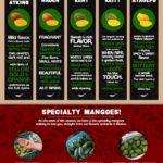 Mexican Mango Varietals