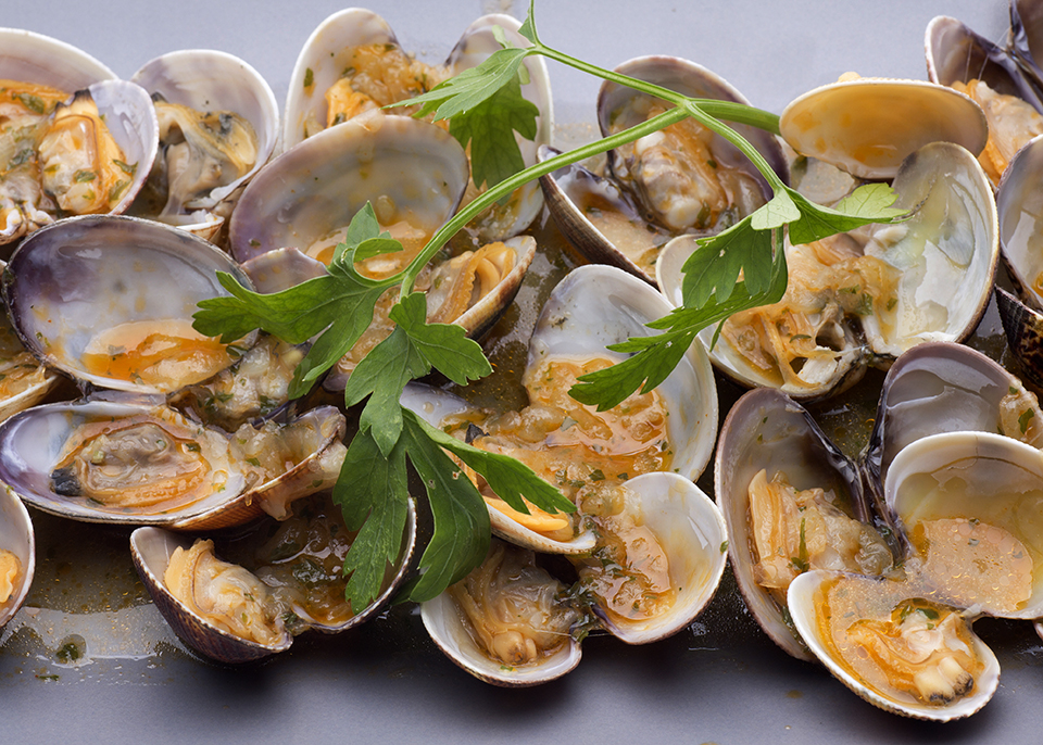 <a class=&quot;wonderplugin-gridgallery-posttitle-link&quot; href=&quot;http://www.underthemangotree.crespoorganic.com/2019/02/07/winter-citrus-recipes/&quot; target=&quot;_blank&quot;>Mango Lime Buttered Clams</a>