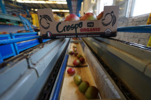 Crespo Organic Line
