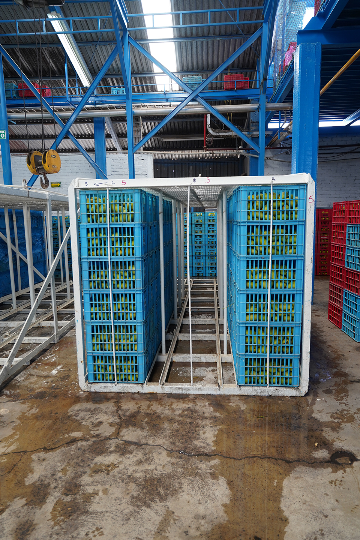 DSC00544edj hot water bath cage being loaded copy