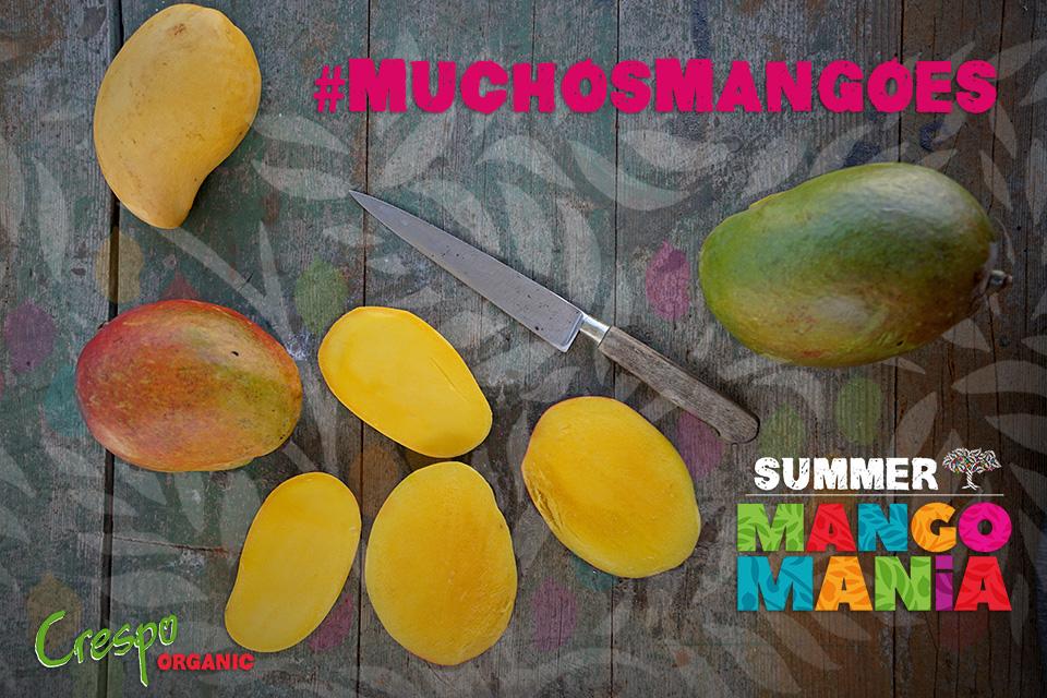 "<a class=""wonderplugin-gridgallery-posttitle-link"" href=""https://www.underthemangotree.crespoorganic.com/2018/06/26/the-crespo-organic-kitchencelebrates-summer-mango-mania-with-muchosmangoes/"" target=""_blank"">The Crespo Organic Kitchen Celebrates Summer Mango Mania with #MuchosMangoes</a>"
