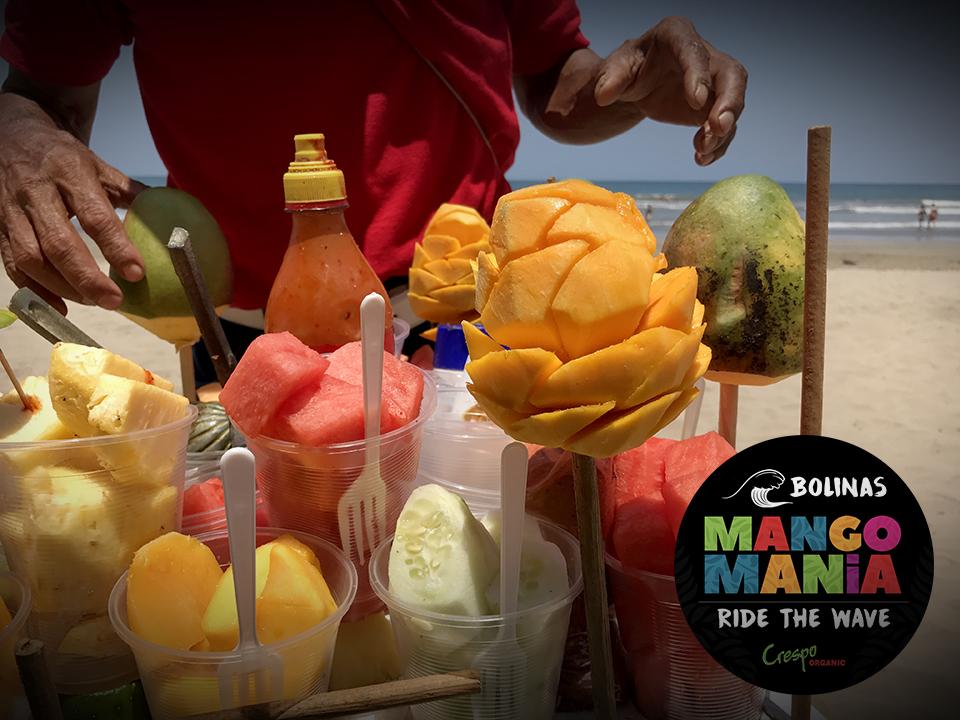 "<a class=""wonderplugin-gridgallery-posttitle-link"" href=""https://www.underthemangotree.crespoorganic.com/2019/06/16/bolinas-summer-mango-mania/"" target=""_blank"">Bolinas Summer Mango Mania</a>"