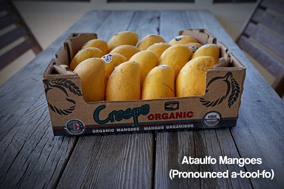"<a class=""wonderplugin-gridgallery-posttitle-link"" href=""https://www.underthemangotree.crespoorganic.com/2021/04/23/little-ataulfo-mangoes/"" target=""_blank"">Little Ataulfo Mangoes</a>"