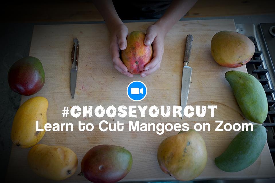 "<a class=""wonderplugin-gridgallery-posttitle-link"" href=""https://www.underthemangotree.crespoorganic.com/2021/06/25/chooseyourcut-a-lesson-on-mango-cutting/"" target=""_blank"">#ChooseYourCut: A Lesson on Mango Cutting</a>"
